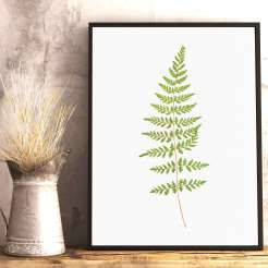 Buy Printable Botanical Art