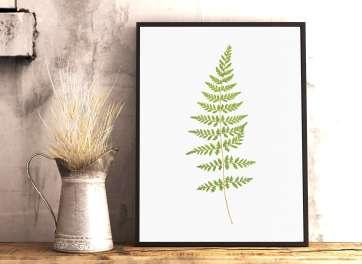 Buy Printable Botanical Art